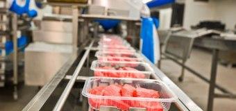 Settore alimentare: un impiegato nella logistica